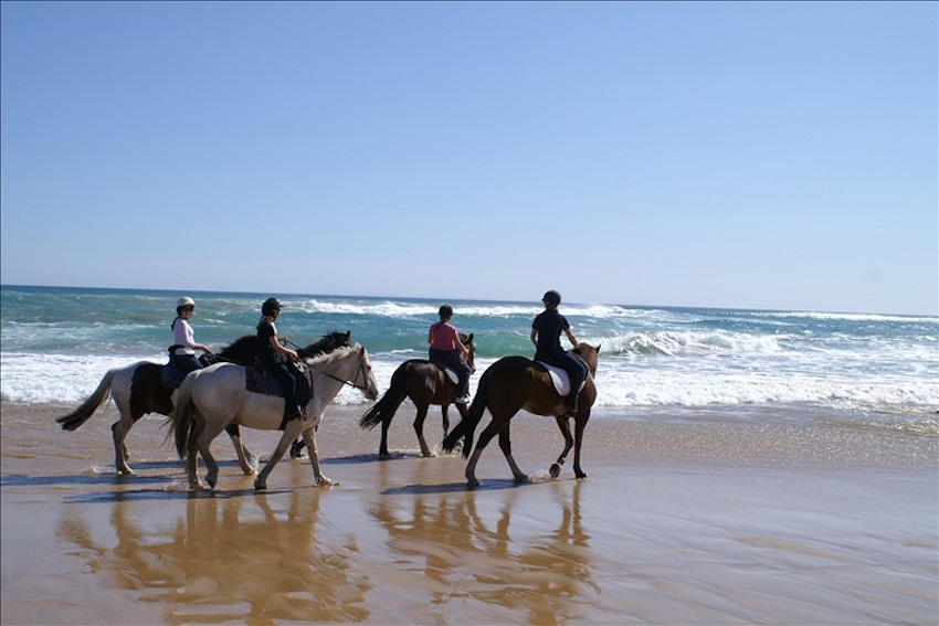 Horse Riding @ Gunnamatta Trail Rides